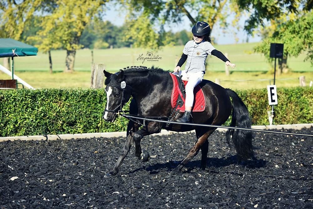 Pferdefotografie Halle Reiterhof Teicha Turnier Friese Voltigieren