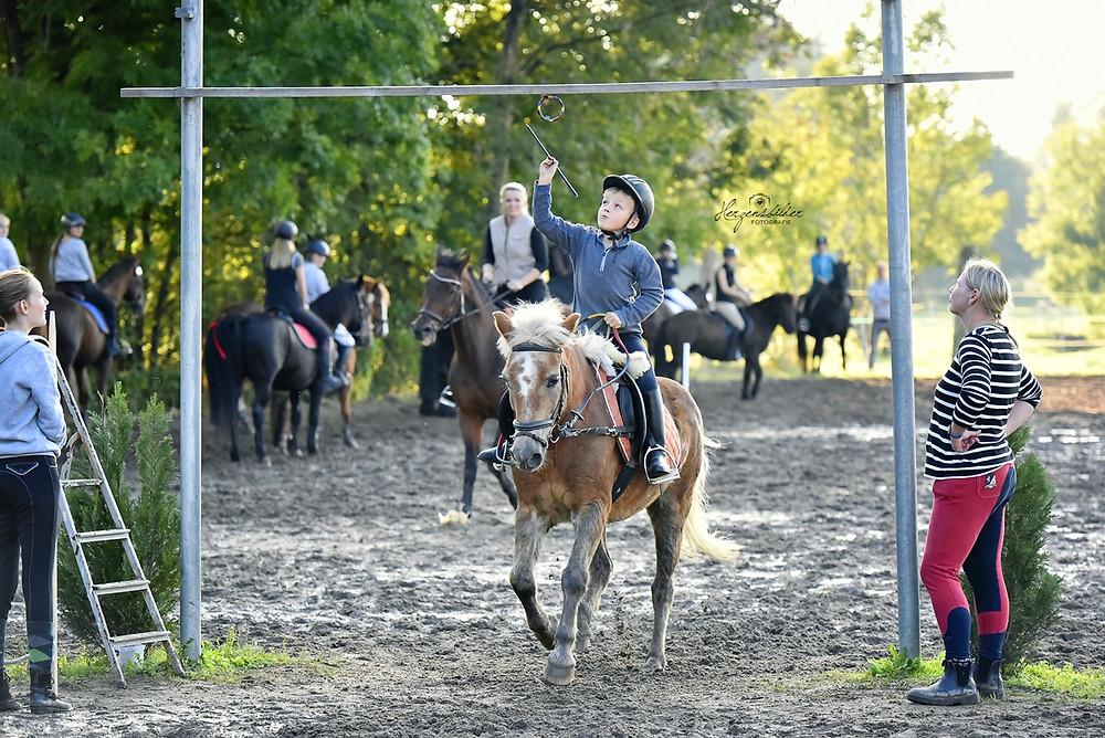 Pferdefotografie Halle Reiterhof Teicha Turnier Friese Ringreiten