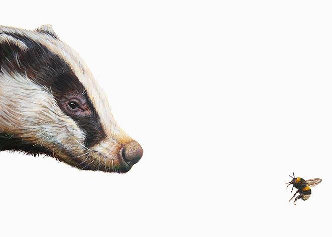 Badger-Bee.jpg