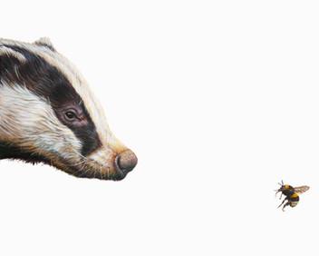 Top Predator - Badger & Bee