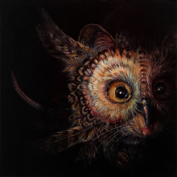 Masquerade - Apodemus Asio