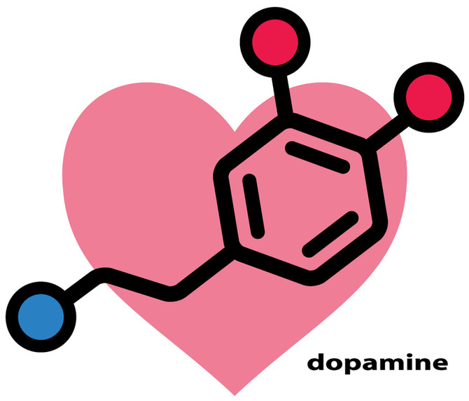 ¿Intrigados por la bioquímica entre los enamorados?