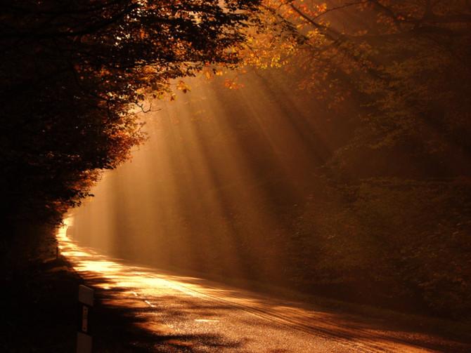 Sabiduría espiritual y sabiduría psicológica