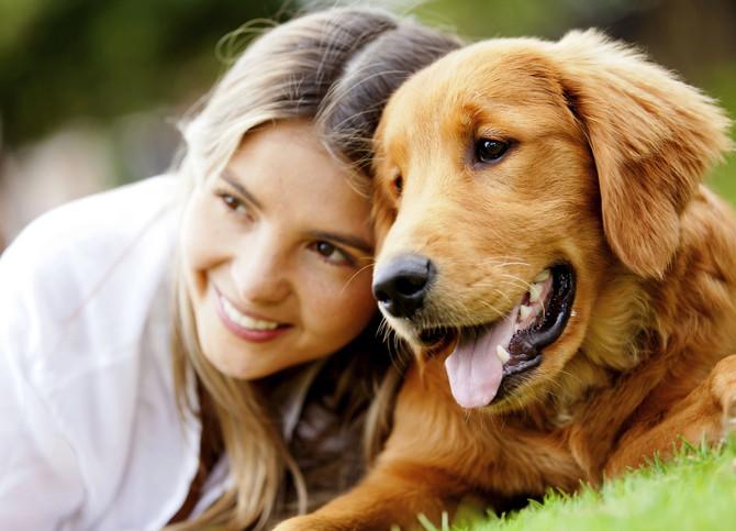 El poder curativo de tu mascota