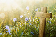 wooden-cross-purple-flower-sunlight-fiel
