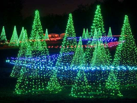 Festive Lights in Charlotte and NC