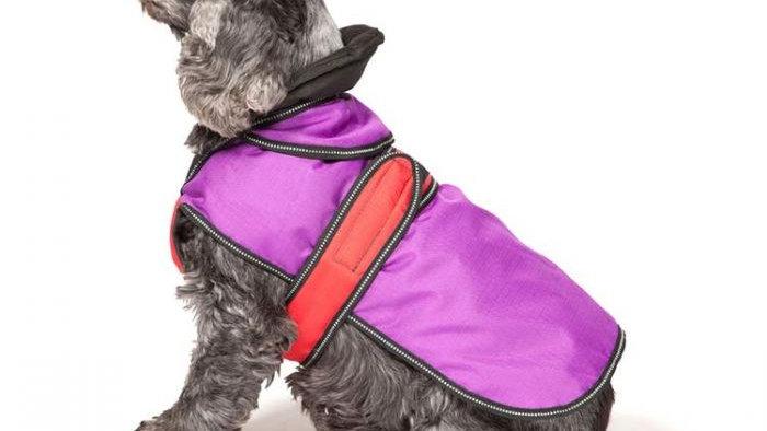 Danish Design 2 in 1 Dog Coat Purple
