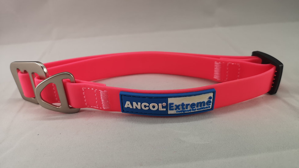 Ancol Extreme Dog Collar