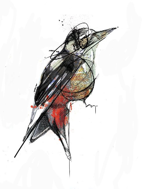 """'Greater Spotted Woodpecker' 8"""" X 10"""" PRINT"""