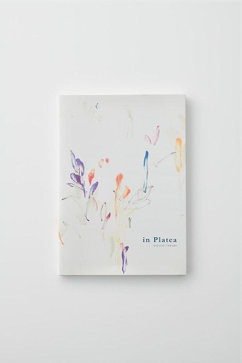 個展図録「in Platea」
