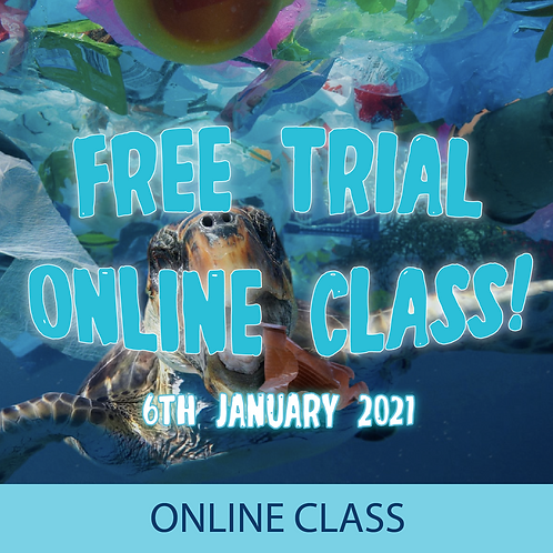 Free Trial Online Class