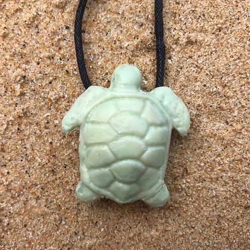 Green Sea Turtle - Lichen