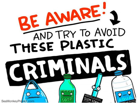 Be Aware! And Try to Avoid These Plastic Criminals