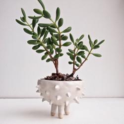 get creative in pinching a pot