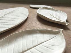 leaf on raw clay