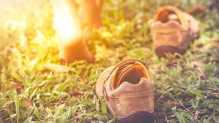 Grounding: The Missing Element to Healing Autoimmunity?