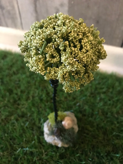 Small Green Tree