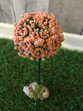 Small Rose Pink Tree
