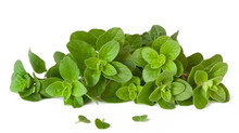 Oregano Oil Proves Effective Against Coronavirus