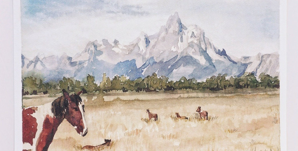 Horses & Tetons