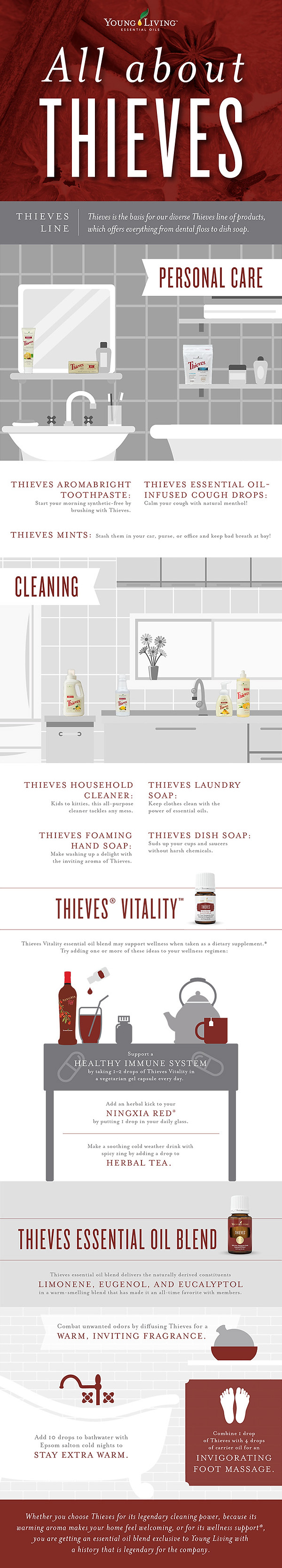blog-All-about-Thieves_Infographic_US-1.