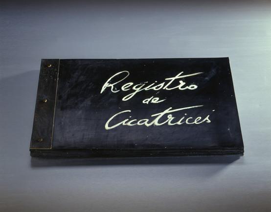 Registro de Cicatrices II / Registered Scars II