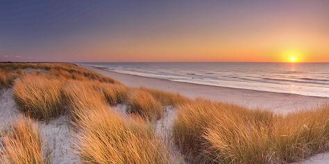 scenic-dune.jpg