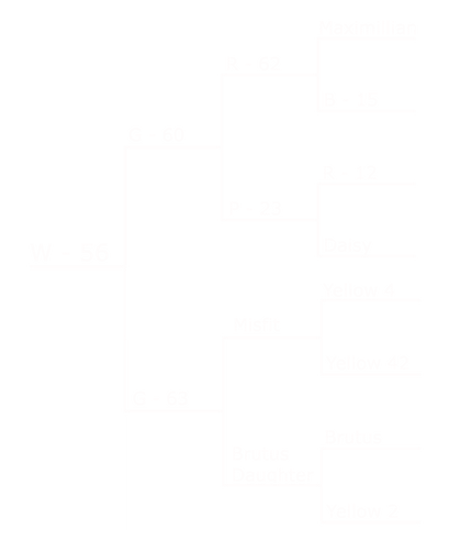 W56 pedigree.png