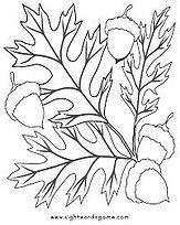 oak leaves and acorns.jpg