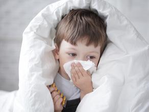 換季抗敏大作戰,常見呼吸道過敏原有哪些?