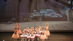 Scarpette Rosa Academy 2015