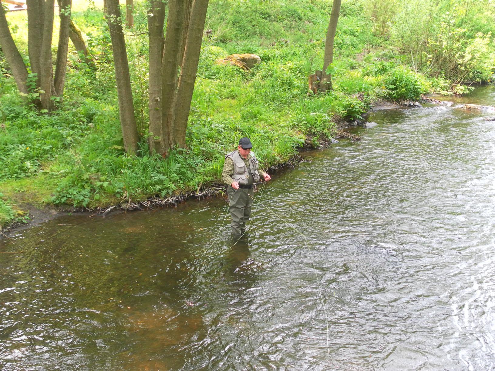 Die Bode im Harz 2006 - 2013