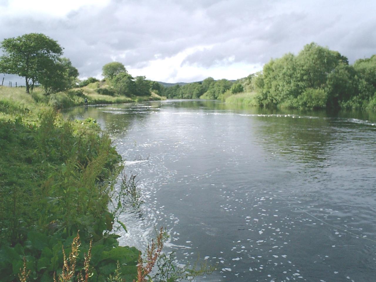 River Moy 2008