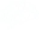 cmyk_logo_brain%2520%25D0%25BA%25D0%25BE
