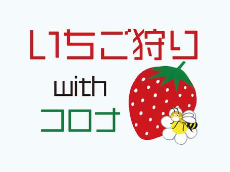 いちご狩り with コロナ