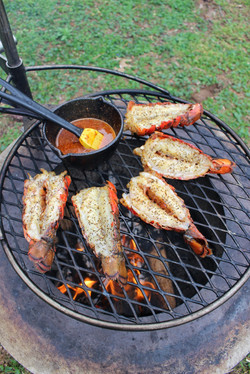 Grilled Lobster with Honey Cajun Butter