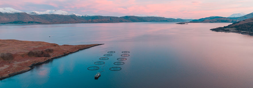 AQUACULTURE FARM, RESPONSIBLY FARMED SEAFOOD, GREAT AMERICAN SEAFOOD, farmed seafood practices
