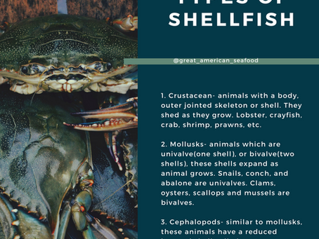 SEAFOODie Stuff: The Three Types of Shellfish