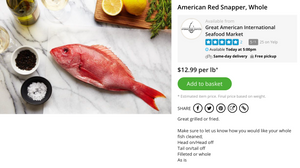 buy whole snapper now
