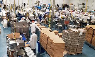 seafood production photo 2.jpg