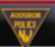 pd_logo.jpg