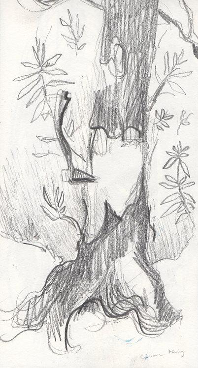Axe in a Tree