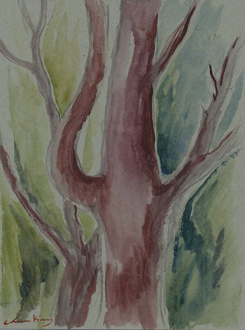 Hook Branch