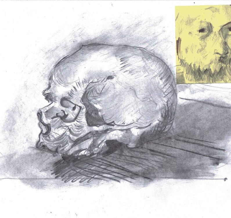 Cezanne Skull Study