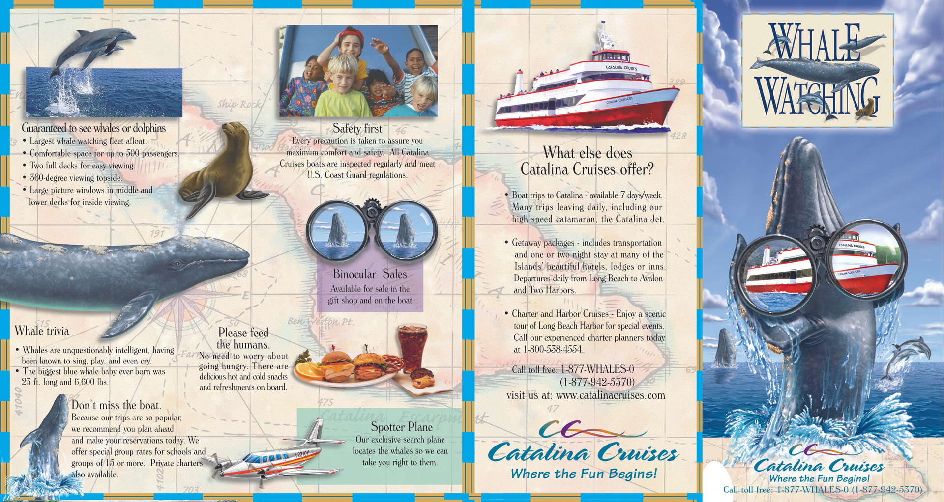 Catalina Coloring Book Outside Pages