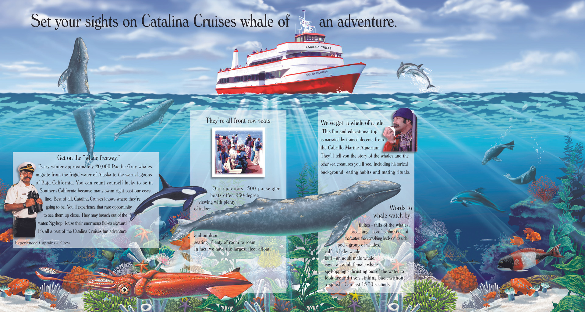 Catalina Coloring Book Inside Pages