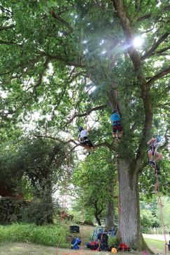 Acitivy at Skånes Djurpark (Skåne's Zoo). Photo: Anna Larsson.