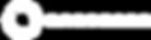 Logo Orocobre.png