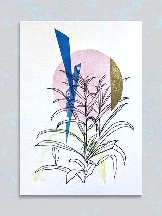 Garden Plants: A4 Embellished Print