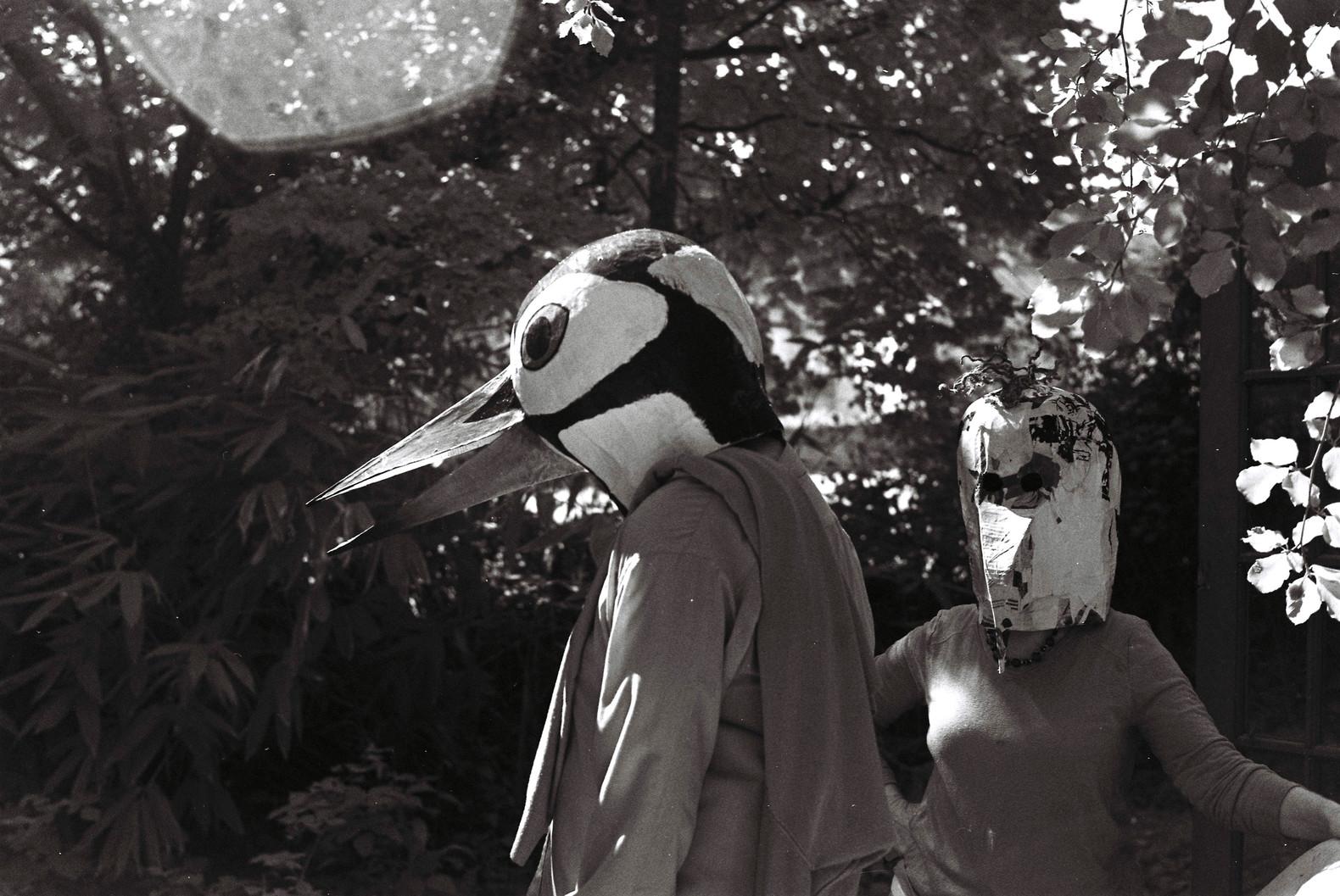 Huh! Birdman Series2019